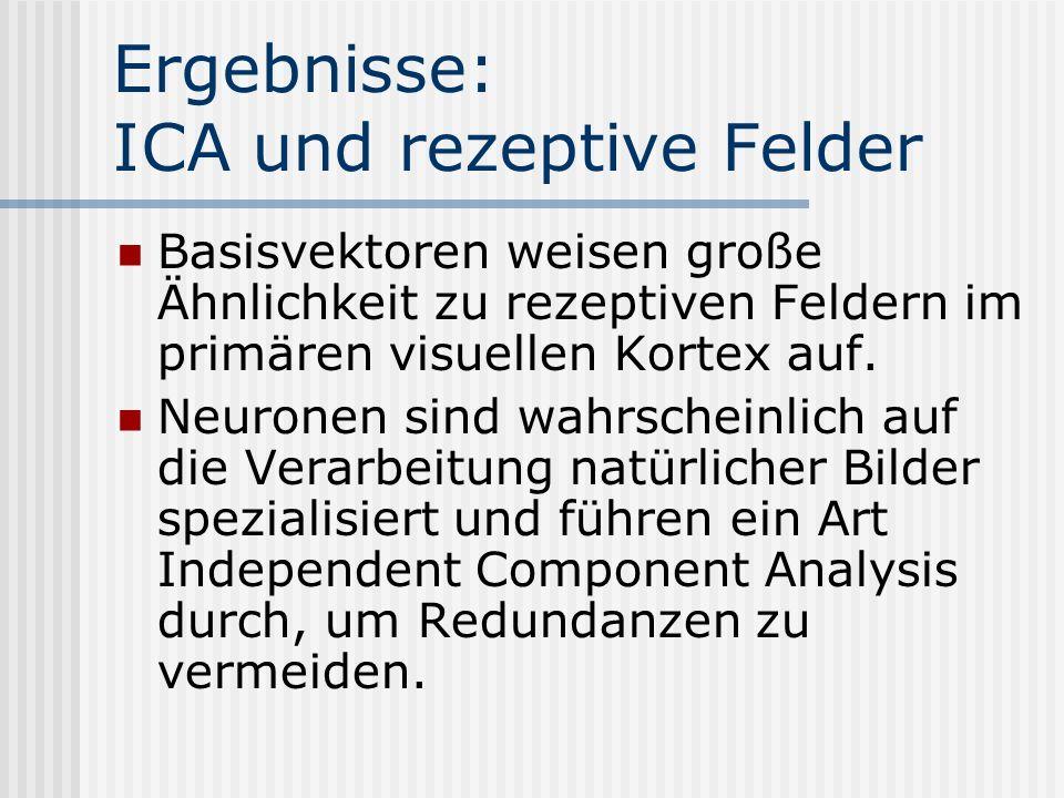 Ergebnisse: ICA und rezeptive Felder Basisvektoren weisen große Ähnlichkeit zu rezeptiven Feldern im primären visuellen Kortex auf. Neuronen sind wahr