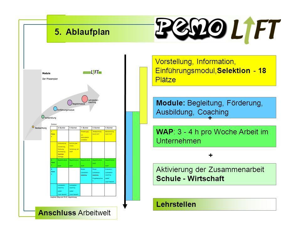 Vorstellung, Information, Einführungsmodul,Selektion - 18 Plätze Module: Begleitung, Förderung, Ausbildung, Coaching WAP: 3 - 4 h pro Woche Arbeit im Unternehmen 5.