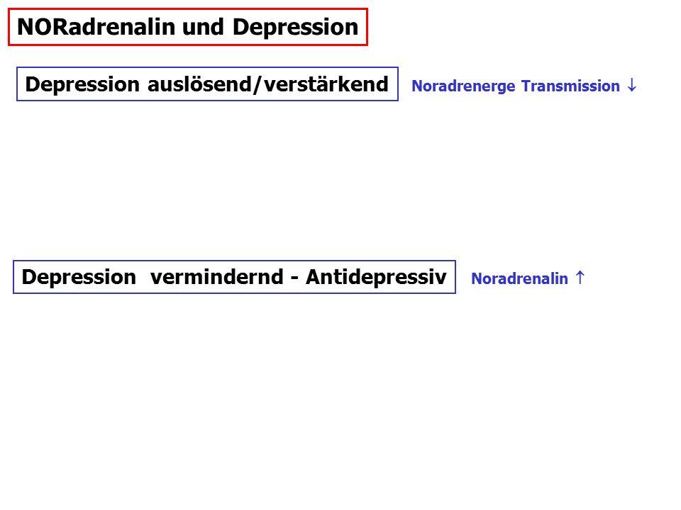 NORadrenalin und Depression Depression auslösend/verstärkend Depression vermindernd - Antidepressiv Noradrenerge Transmission  Noradrenalin 