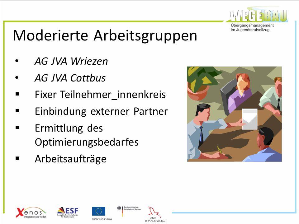 Moderierte Arbeitsgruppen AG JVA Wriezen AG JVA Cottbus  Fixer Teilnehmer_innenkreis  Einbindung externer Partner  Ermittlung des Optimierungsbedarfes  Arbeitsaufträge