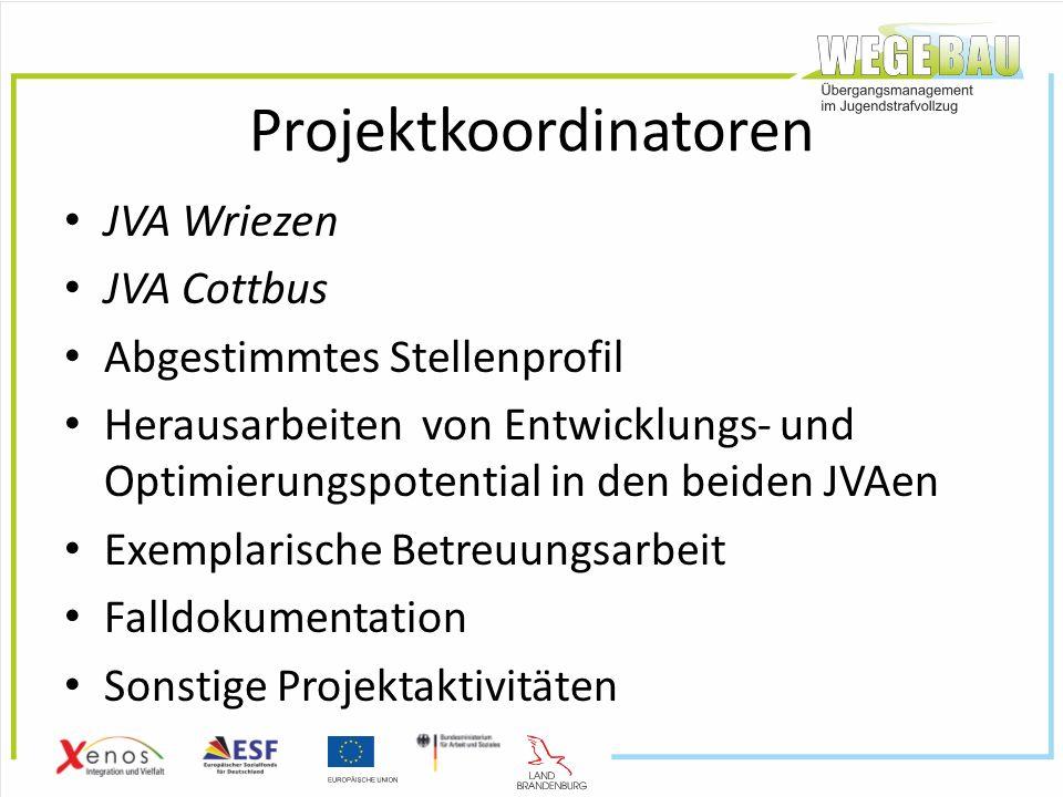 Projektkoordinatoren JVA Wriezen JVA Cottbus Abgestimmtes Stellenprofil Herausarbeiten von Entwicklungs- und Optimierungspotential in den beiden JVAen Exemplarische Betreuungsarbeit Falldokumentation Sonstige Projektaktivitäten
