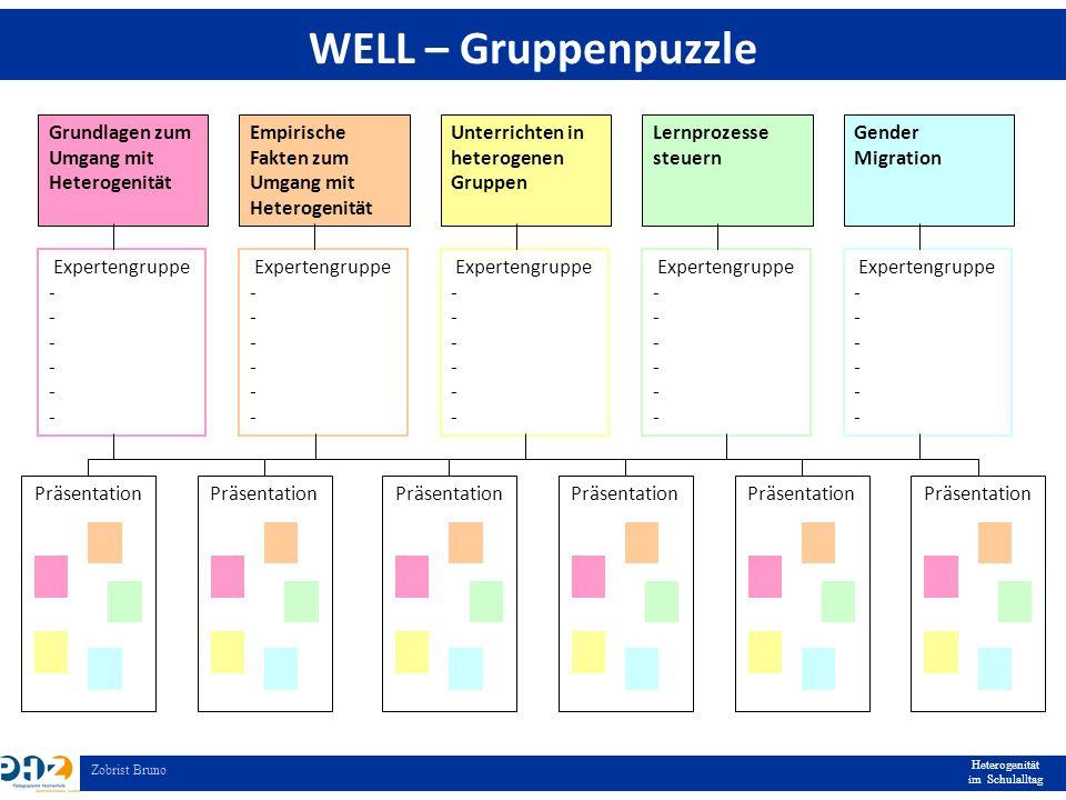Heterogenität im Schulalltag Zobrist Bruno WELL – Gruppenpuzzle Grundlagen zum Umgang mit Heterogenität Empirische Fakten zum Umgang mit Heterogenität