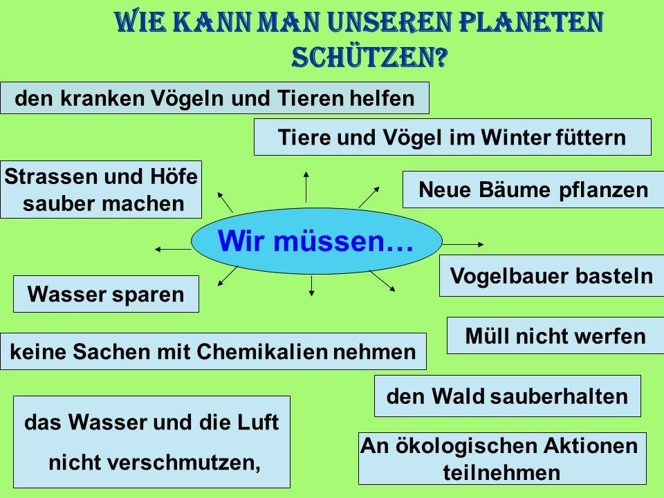 Wir müssen… Neue Bäume pflanzen Vogelbauer basteln den Wald sauberhalten das Wasser und die Luft nicht verschmutzen, Tiere und Vögel im Winter füttern