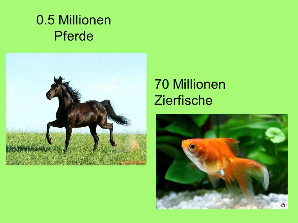 0.5 Millionen Pferde 70 Millionen Zierfische