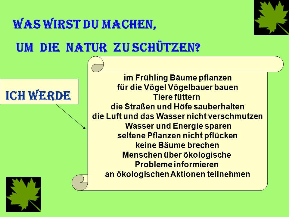 Was wirst du machen, um die Natur zu schützen? Ich werde im Frühling Bäume pflanzen für die Vögel Vögelbauer bauen Tiere füttern die Straßen und Höfe