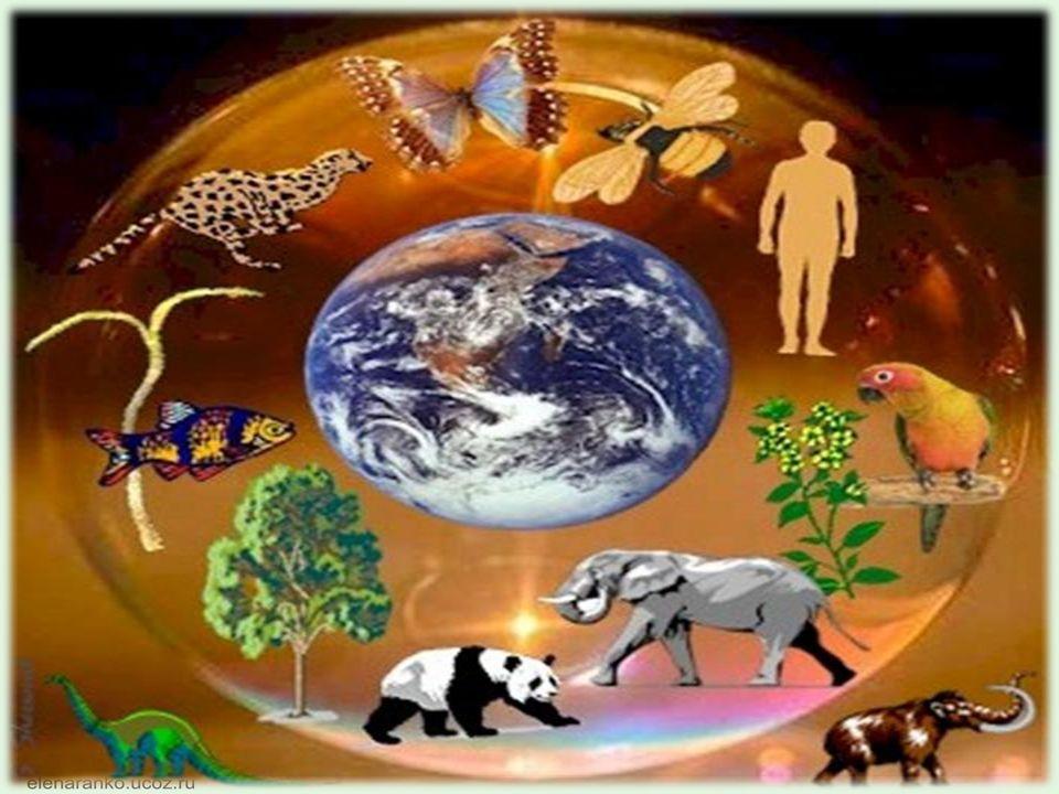 Sorgen wir gemeinsam für unseren Planeten Erde.Die Natur schützen heiβt die Heimat schützen.