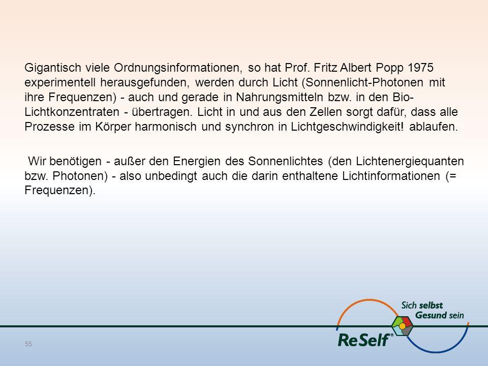 Gigantisch viele Ordnungsinformationen, so hat Prof. Fritz Albert Popp 1975 experimentell herausgefunden, werden durch Licht (Sonnenlicht-Photonen mit