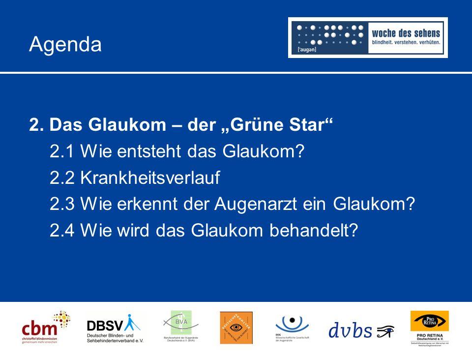 """Agenda 2.Das Glaukom – der """"Grüne Star 2.1 Wie entsteht das Glaukom."""