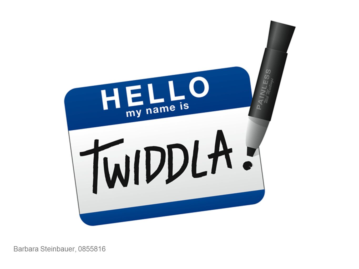 Online collaboration tool / Web-based meeting playground Was ist Twiddla?