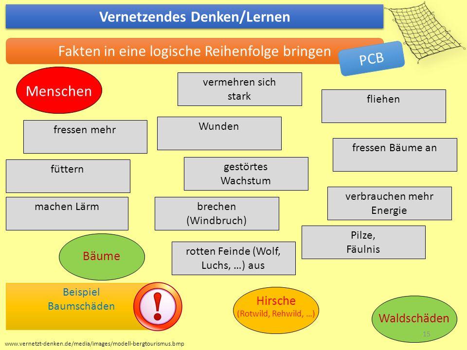 www.vernetzt-denken.de/media/images/modell-bergtourismus.bmp Vernetzendes Denken/Lernen Fakten in eine logische Reihenfolge bringen Beispiel Baumschäd
