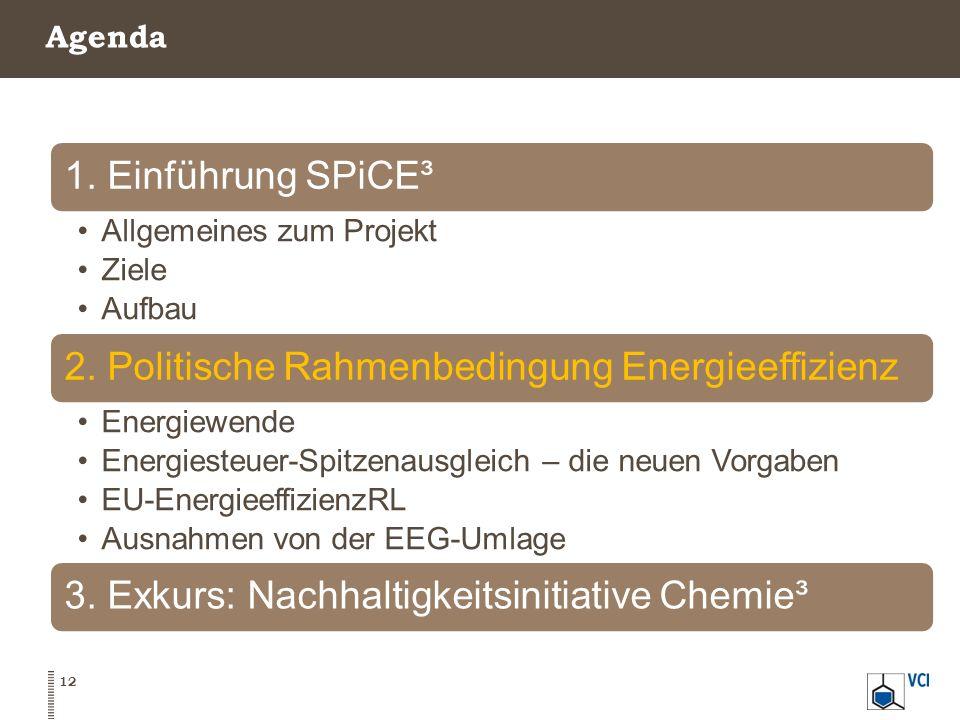 Agenda 12 1. Einführung SPiCE³ Allgemeines zum Projekt Ziele Aufbau 2. Politische Rahmenbedingung Energieeffizienz Energiewende Energiesteuer-Spitzena
