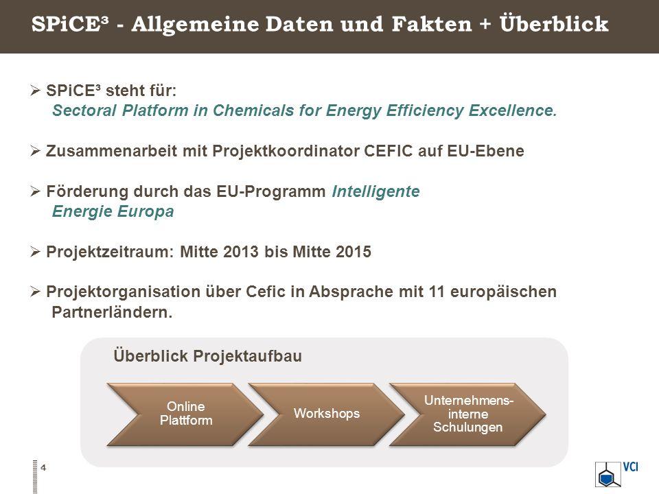 SPiCE³ - Allgemeine Daten und Fakten + Überblick  SPiCE³ steht für: Sectoral Platform in Chemicals for Energy Efficiency Excellence.  Zusammenarbeit