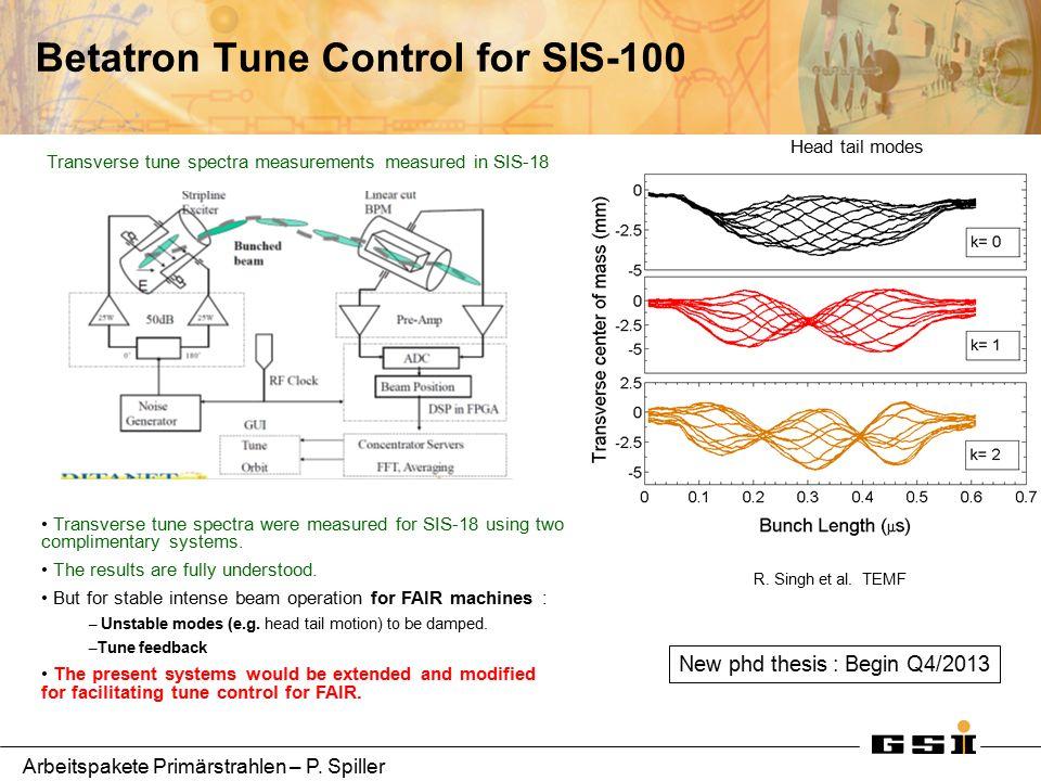 Arbeitspakete Primärstrahlen – P. Spiller Betatron Tune Control for SIS-100 R.