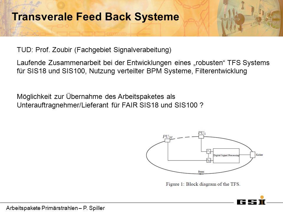 Arbeitspakete Primärstrahlen – P. Spiller Transverale Feed Back Systeme TUD: Prof.