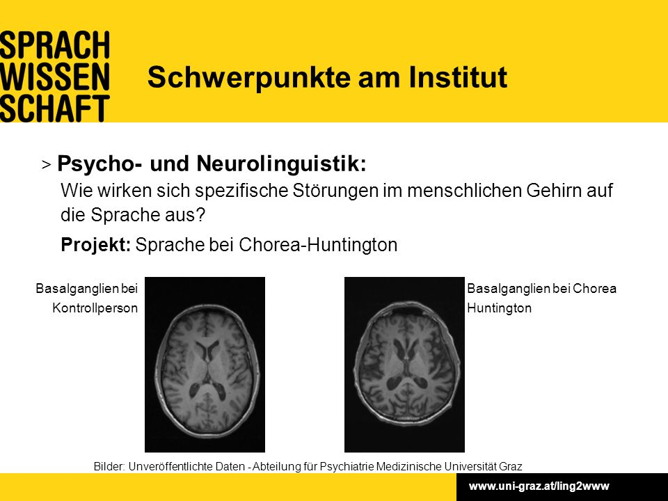 www.uni-graz.at/ling2www > Psycho- und Neurolinguistik: Wie wirken sich spezifische Störungen im menschlichen Gehirn auf die Sprache aus? Projekt: Spr