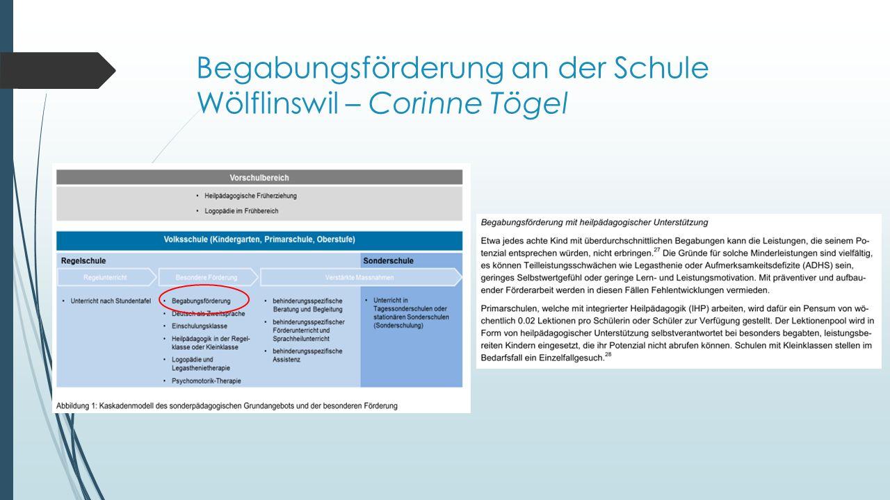Begabungsförderung an der Schule Wölflinswil – Corinne Tögel