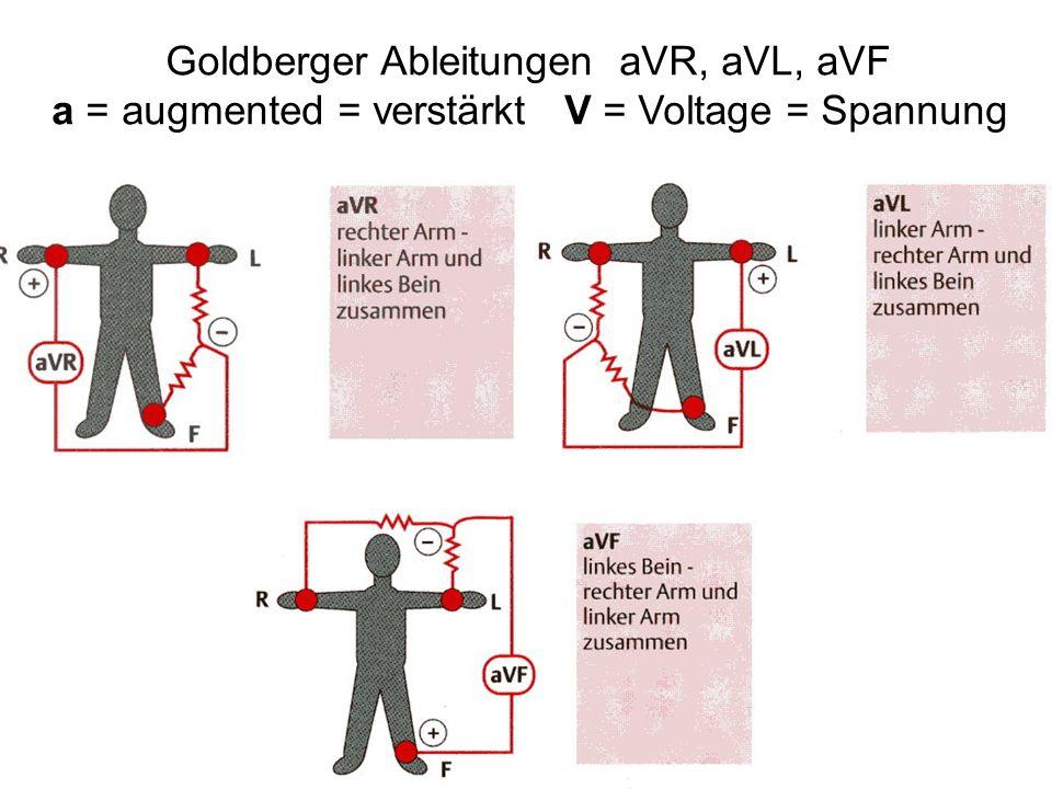 Goldberger Ableitungen aVR, aVL, aVF a = augmented = verstärkt V = Voltage = Spannung
