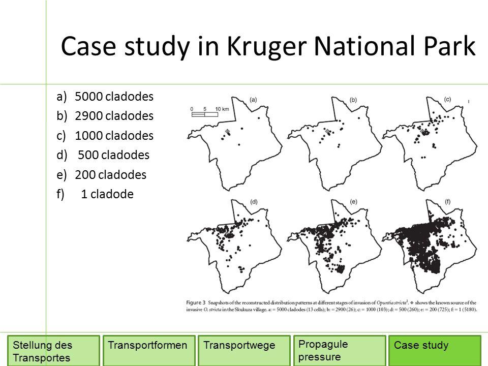Case study in Kruger National Park TransportformenTransportwege Propagule pressure Stellung des Transportes Case study a)5000 cladodes b)2900 cladodes c)1000 cladodes d) 500 cladodes e)200 cladodes f) 1 cladode