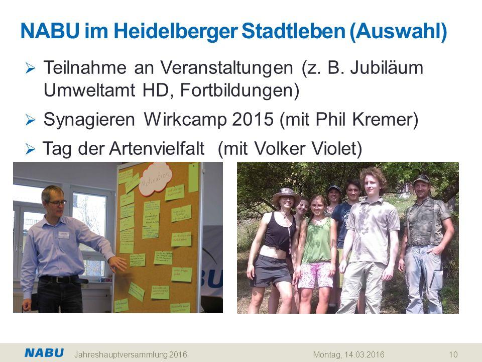 NABU im Heidelberger Stadtleben (Auswahl) 10  Teilnahme an Veranstaltungen (z. B. Jubiläum Umweltamt HD, Fortbildungen)  Synagieren Wirkcamp 2015 (m