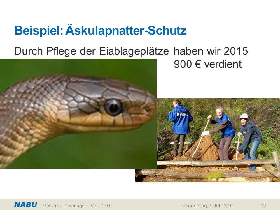 Beispiel: Äskulapnatter-Schutz Durch Pflege der Eiablageplätze haben wir 2015 900 € verdient Donnerstag, 7. Juli 2016PowerPoint Vorlage - Ver. 1.0.012
