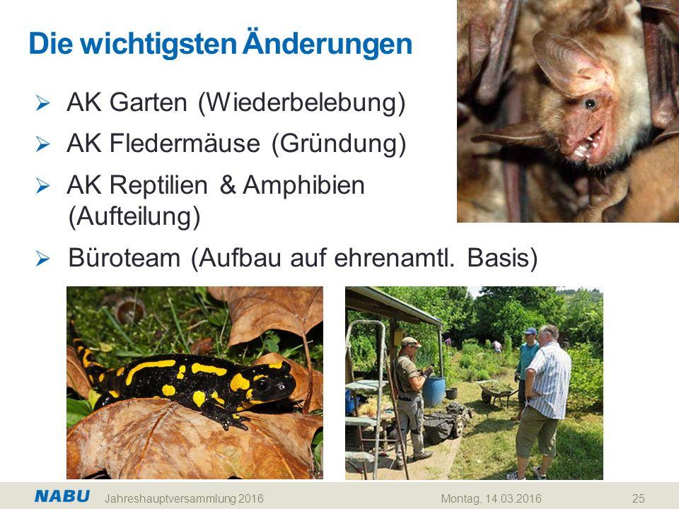 Die wichtigsten Änderungen 25  AK Garten (Wiederbelebung)  AK Fledermäuse (Gründung)  AK Reptilien & Amphibien (Aufteilung)  Büroteam (Aufbau auf ehrenamtl.