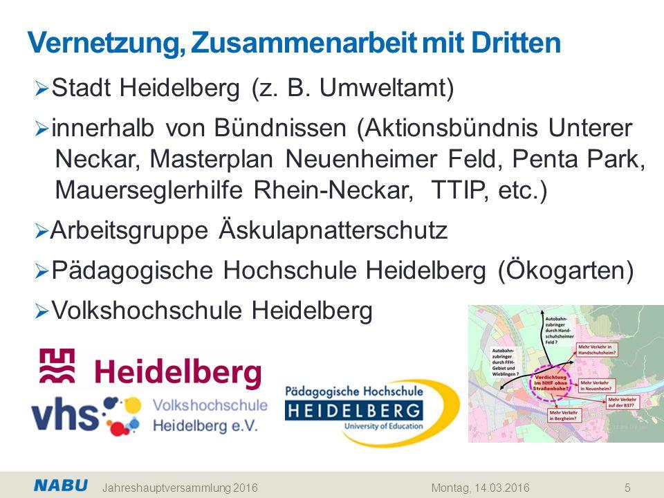 Vernetzung, Zusammenarbeit mit Dritten 5  Stadt Heidelberg (z. B. Umweltamt)  innerhalb von Bündnissen (Aktionsbündnis Unterer Neckar, Masterplan Ne