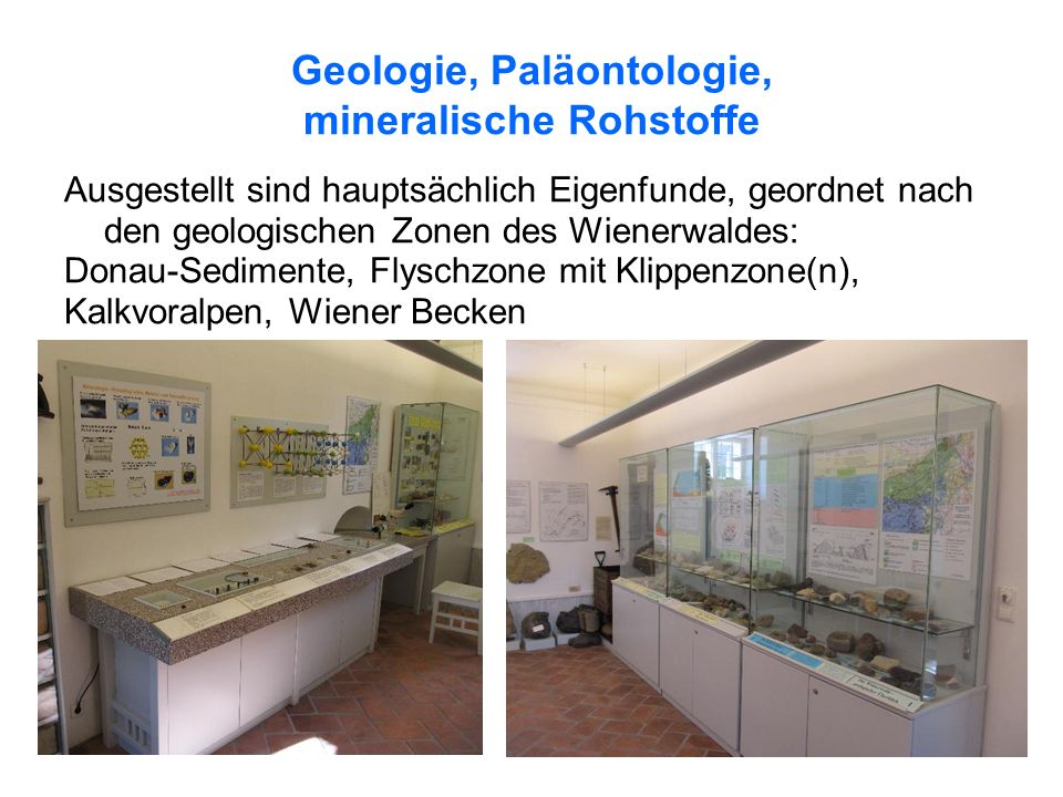 Geologie, Paläontologie, mineralische Rohstoffe Ausgestellt sind hauptsächlich Eigenfunde, geordnet nach den geologischen Zonen des Wienerwaldes: Donau-Sedimente, Flyschzone mit Klippenzone(n), Kalkvoralpen, Wiener Becken