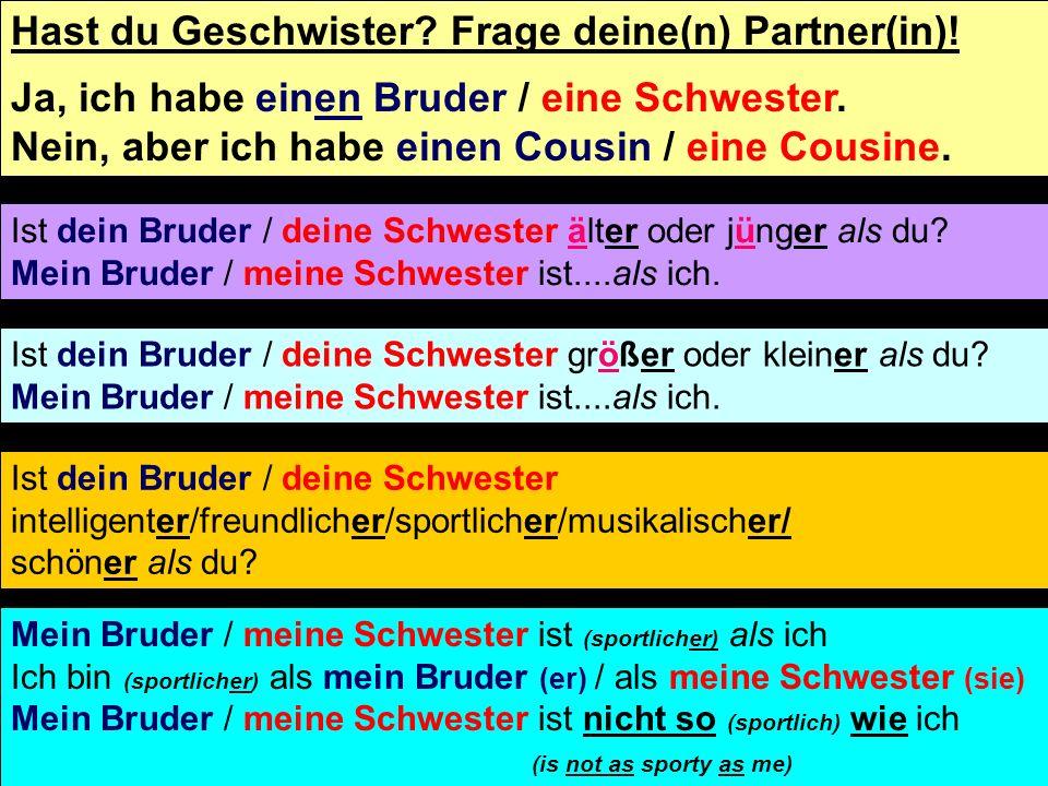 Hast du Geschwister. Frage deine(n) Partner(in). Ja, ich habe einen Bruder / eine Schwester.