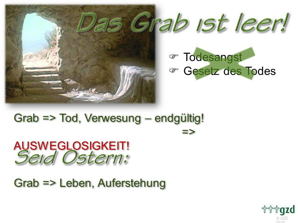  GZD 2016 Grab => Tod, Verwesung – endgültig. => AUSWEGLOSIGKEIT.
