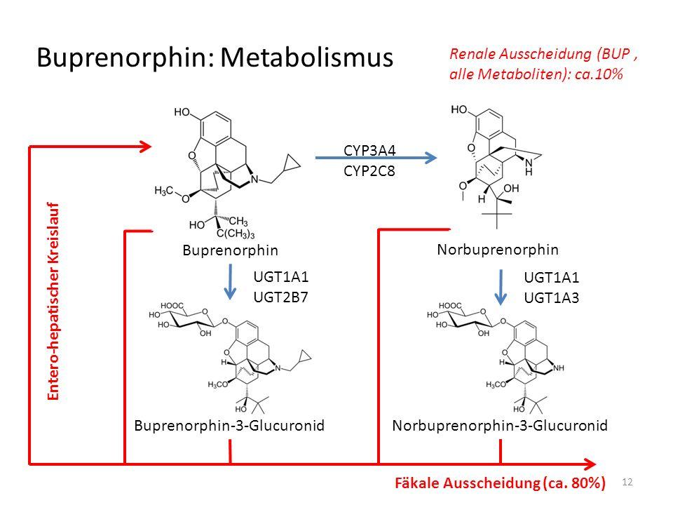 Buprenorphin: Metabolismus Buprenorphin Norbuprenorphin Buprenorphin-3-GlucuronidNorbuprenorphin-3-Glucuronid CYP3A4 CYP2C8 UGT1A1 UGT2B7 UGT1A1 UGT1A