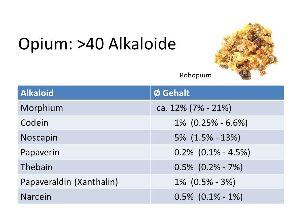 Opium: >40 Alkaloide AlkaloidØ Gehalt Morphiumca. 12% (7% - 21%) Codein1% (0.25% - 6.6%) Noscapin5% (1.5% - 13%) Papaverin0.2% (0.1% - 4.5%) Thebain0.