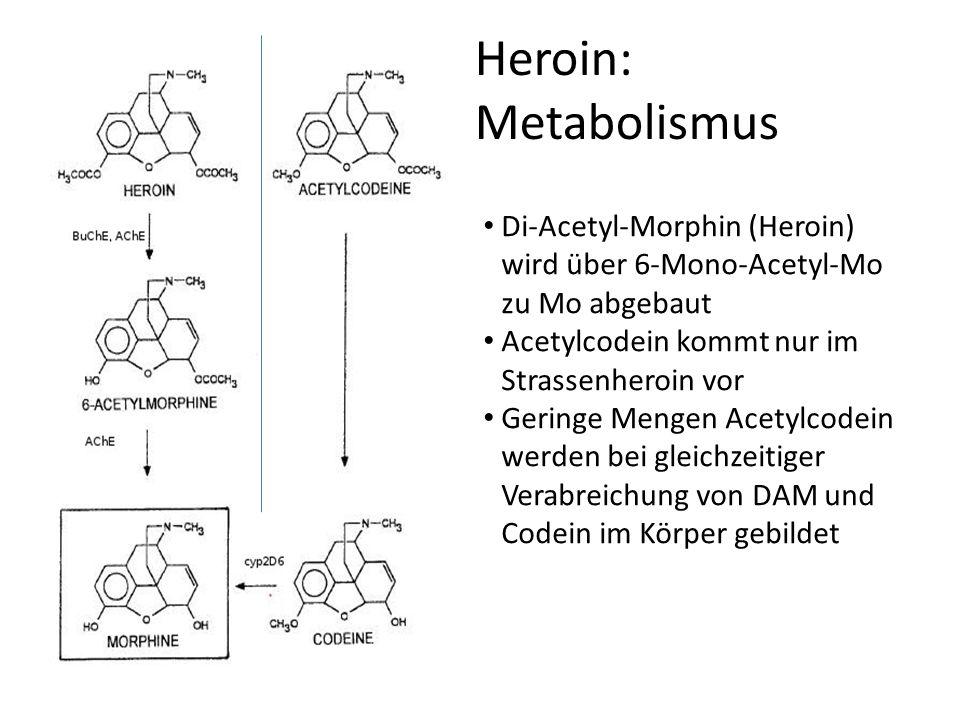Heroin: Metabolismus Di-Acetyl-Morphin (Heroin) wird über 6-Mono-Acetyl-Mo zu Mo abgebaut Acetylcodein kommt nur im Strassenheroin vor Geringe Mengen