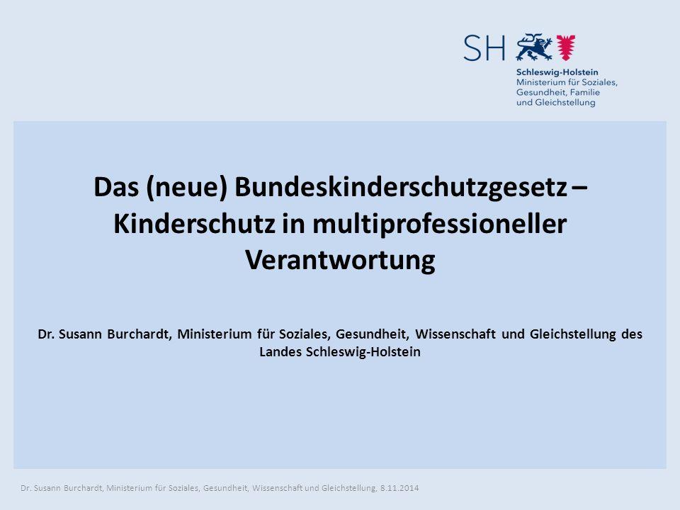 Das (neue) Bundeskinderschutzgesetz – Kinderschutz in multiprofessioneller Verantwortung Dr.