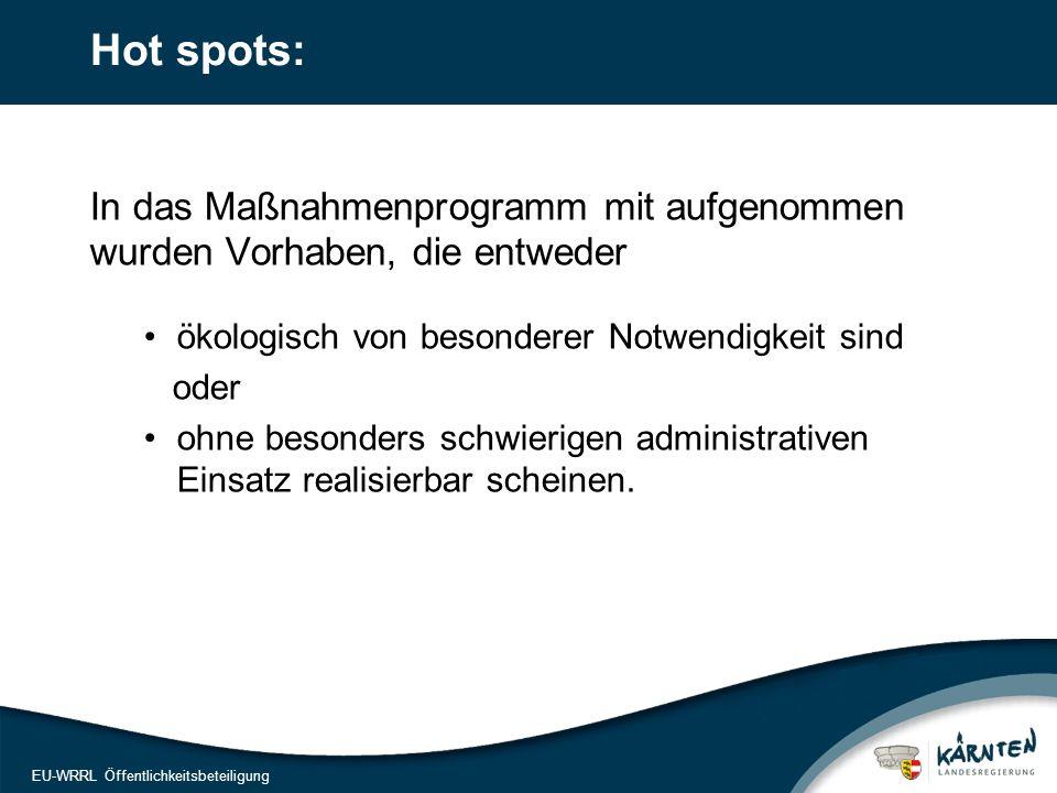 17 EU-WRRL Öffentlichkeitsbeteiligung Hot spots: In das Maßnahmenprogramm mit aufgenommen wurden Vorhaben, die entweder ökologisch von besonderer Notw