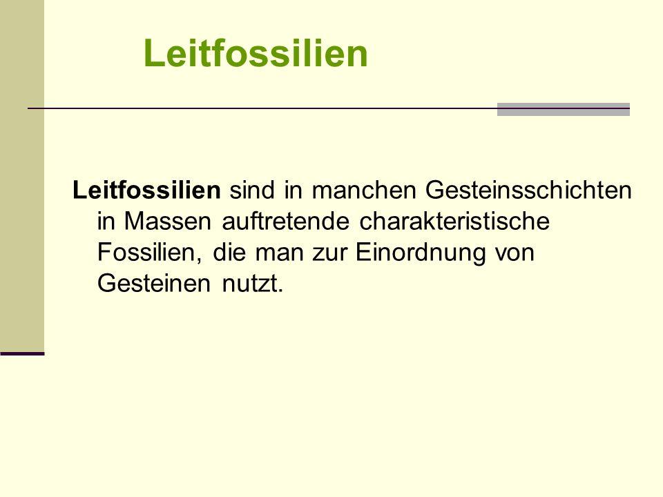 Leitfossilien Leitfossilien sind in manchen Gesteinsschichten in Massen auftretende charakteristische Fossilien, die man zur Einordnung von Gesteinen
