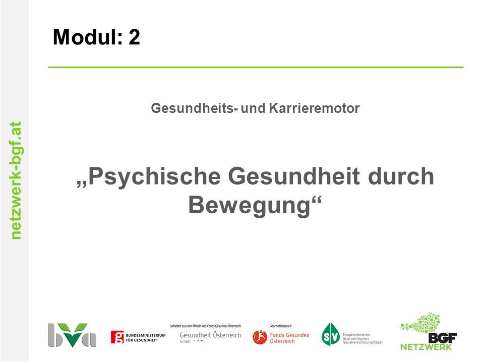 """netzwerk-bgf.at Modul: 2 Gesundheits- und Karrieremotor """"Psychische Gesundheit durch Bewegung"""