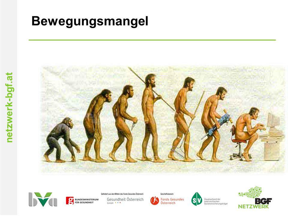 netzwerk-bgf.at Bewegungsmangel