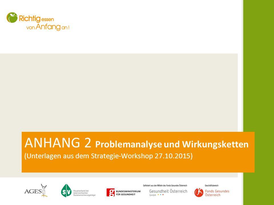 ANHANG 2 Problemanalyse und Wirkungsketten (Unterlagen aus dem Strategie-Workshop 27.10.2015)