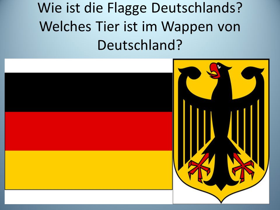 Wie ist die Flagge Deutschlands? Welches Tier ist im Wappen von Deutschland?