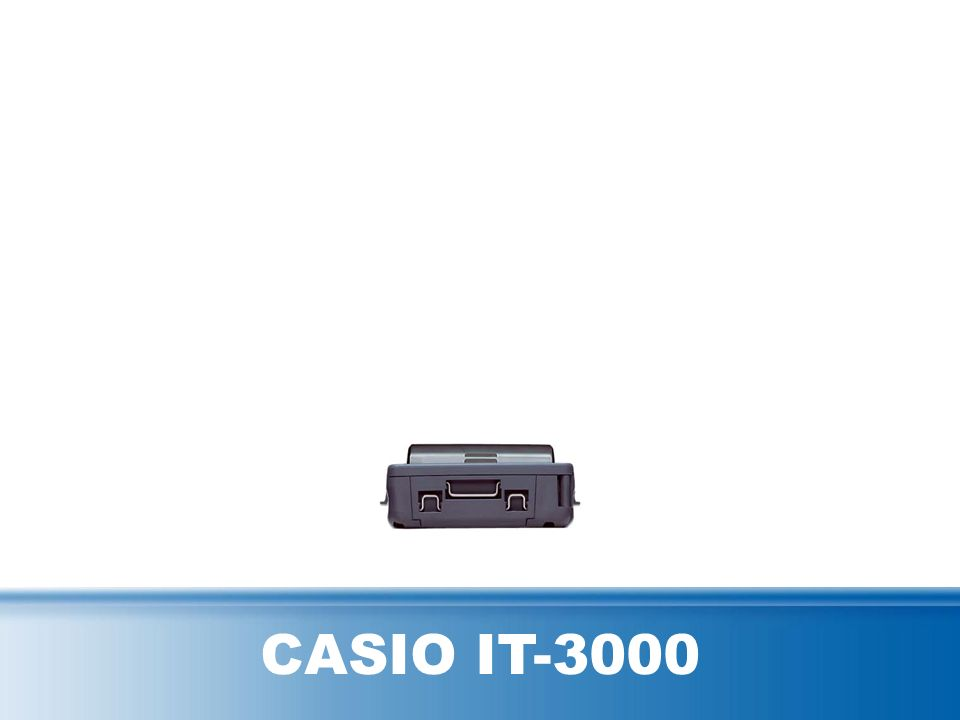 CASIO IT-3000