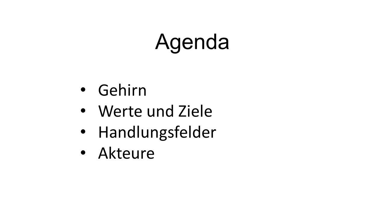 Agenda Gehirn Werte und Ziele Handlungsfelder Akteure