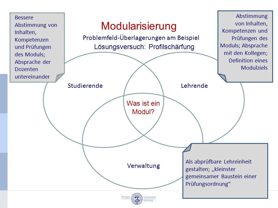 Modularisierung Problemfeld-Überlagerungen am Beispiel StudierendeLehrende Verwaltung Bessere Abstimmung von Inhalten, Kompetenzen und Prüfungen des M