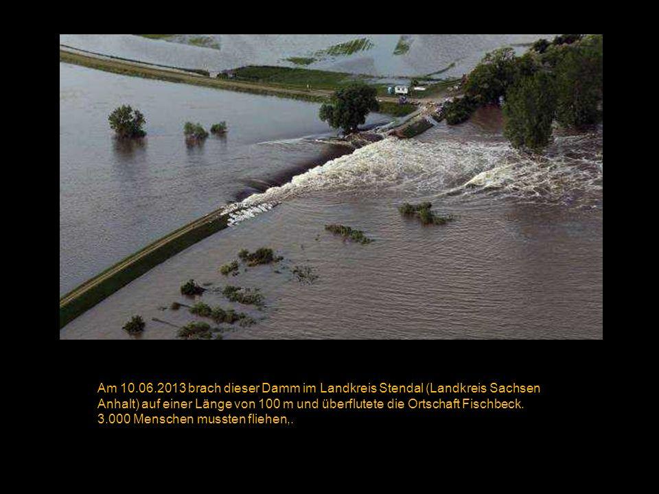 Von der Donau überflutete Wohnhäuser am 05.06.2013 bei Straubing. ( Armin Weigel/ EPA )