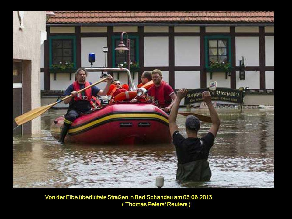 Eine Kuh auf einer vom Rhein überschwemmten Weide bei Xanten ( Federico Gambarini/ Associated Press )