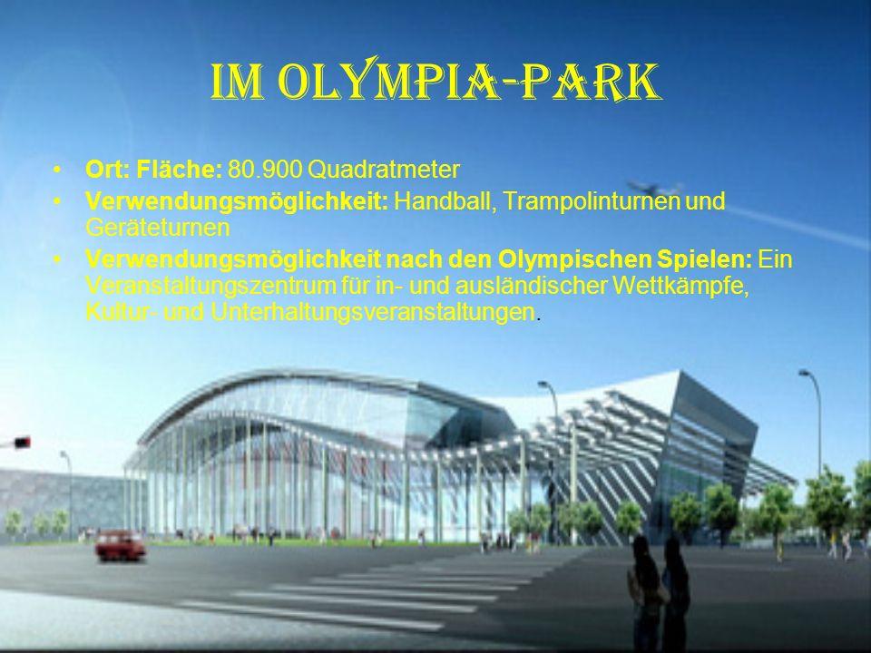 Olympia-Park Fläche: 65.000 bis 80.000 Quadratmeter Sitzplätze: 6000 Festsitzplätze und 11.000 improvisierte Sitzplätze Verwendungsmöglichkeit: Schwimmen, Wasserspringen, Kunstschwimmen