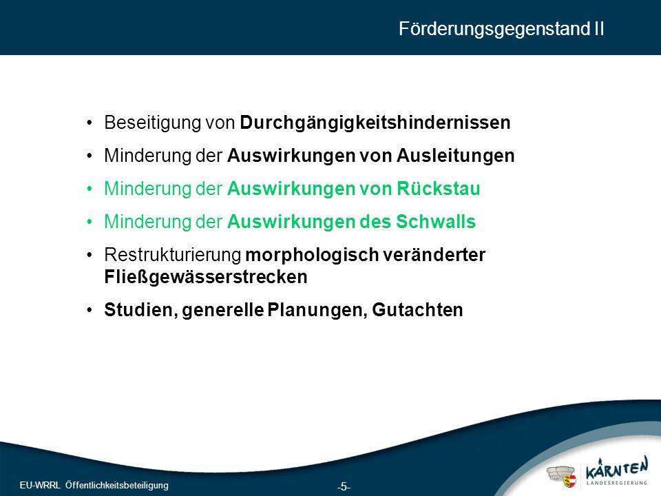 5 EU-WRRL Öffentlichkeitsbeteiligung Förderungsgegenstand II Beseitigung von Durchgängigkeitshindernissen Minderung der Auswirkungen von Ausleitungen Minderung der Auswirkungen von Rückstau Minderung der Auswirkungen des Schwalls Restrukturierung morphologisch veränderter Fließgewässerstrecken Studien, generelle Planungen, Gutachten -5-