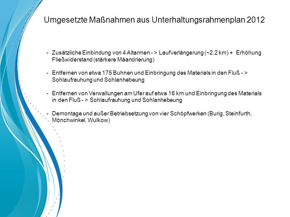 Umgesetzte Maßnahmen aus Unterhaltungsrahmenplan 2012 -Zusätzliche Einbindung von 4 Altarmen - > Laufverlängerung (~2,2 km) + Erhöhung Fließwiderstand (stärkere Mäandrierung) -Entfernen von etwa 175 Buhnen und Einbringung des Materials in den Fluß - > Sohlaufrauhung und Sohlanhebeung -Entfernen von Verwallungen am Ufer auf etwa 16 km und Einbringung des Materials in den Fluß - > Sohlaufrauhung und Sohlanhebeung -Demontage und außer Betriebsetzung von vier Schöpfwerken (Burig, Steinfurth, Mönchwinkel, Wulkow)