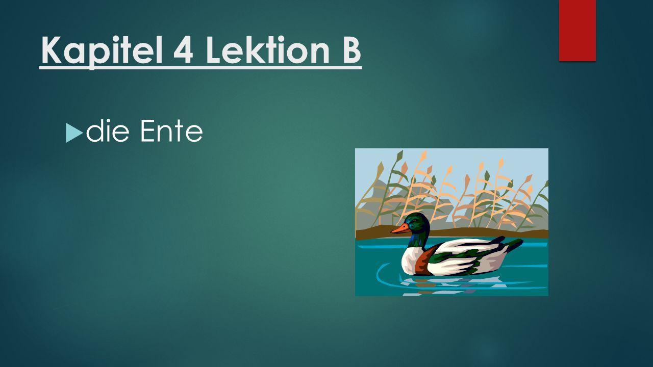 Kapitel 4 Lektion B  die Ente