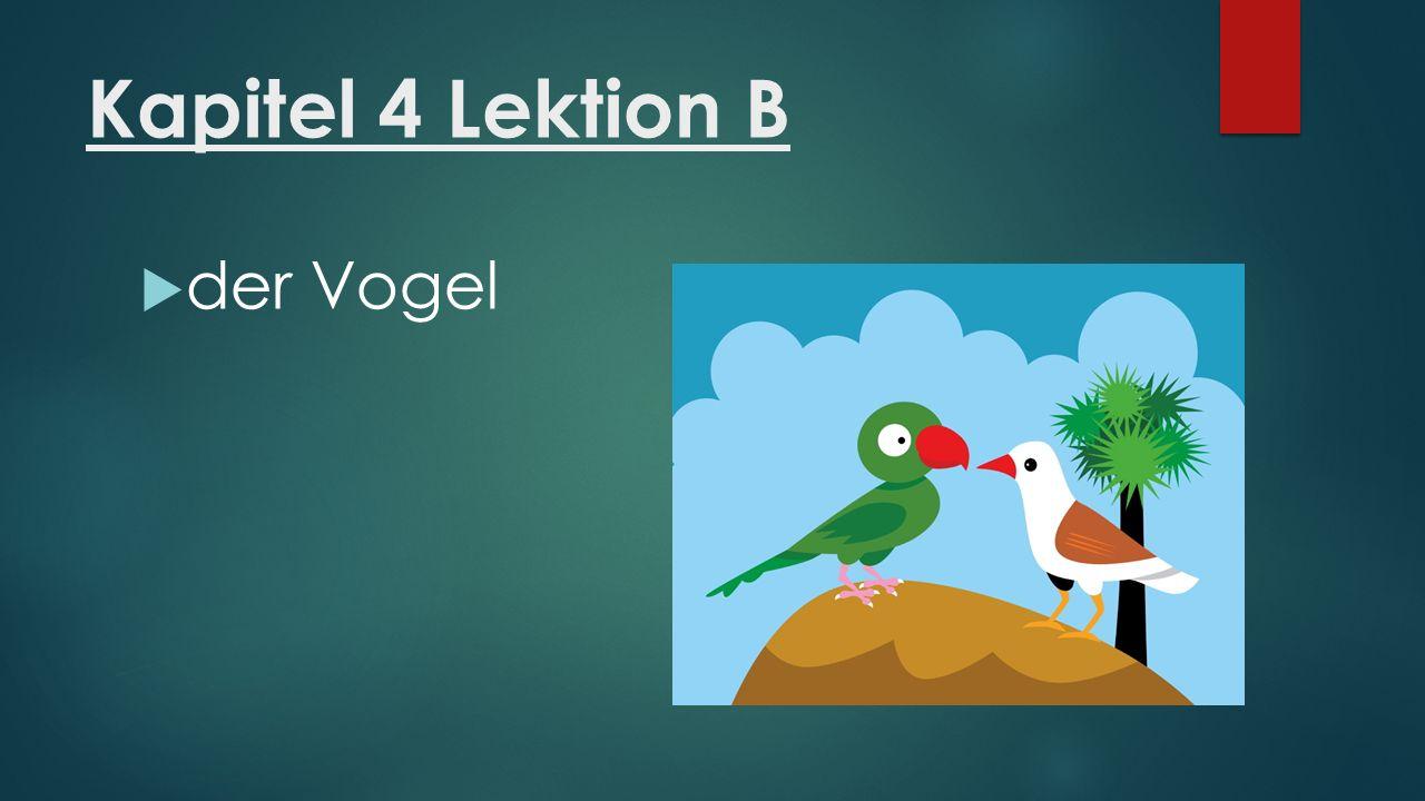 Kapitel 4 Lektion B  der Fisch