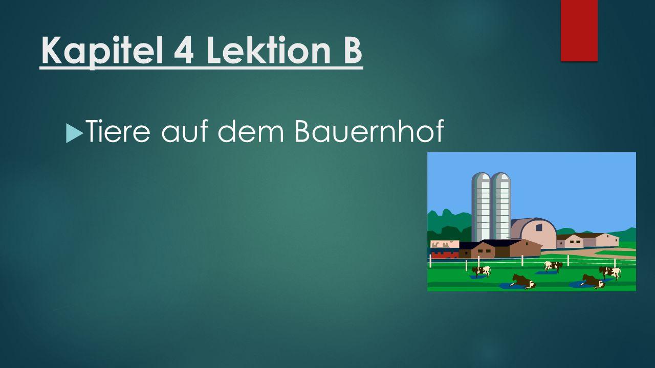 Kapitel 4 Lektion B  das Schaf